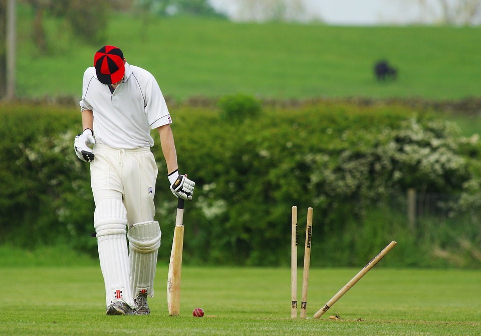 Is Cricket or Horse Racing More Popular?